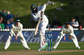 wellington new zealand hashim amla south