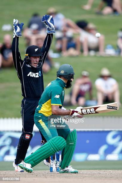 Hashim Amla of South Africa is bowled by Jeetan Patel of New Zealand as Luke Ronchi celebrates during game four of the One Day International series...