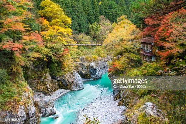 hatonosu canion hatonosu valley - henan province stock pictures, royalty-free photos & images
