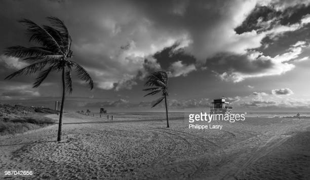 haulover beach bw - haulover beach stock pictures, royalty-free photos & images