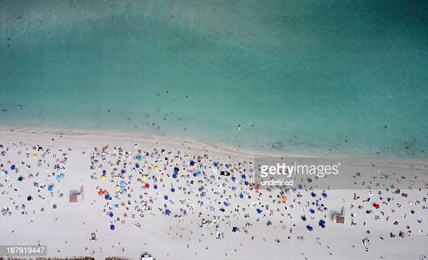 haulover, miami - haulover beach stock pictures, royalty-free photos & images