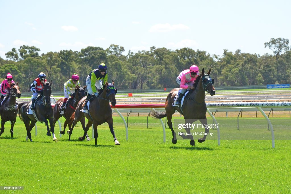 Havana Haymaker ridden by Steven Arnold leads the field in Ron Barassi SV Maiden Plate at Bendigo Racecourse on March 14, 2017 in Bendigo, Australia.