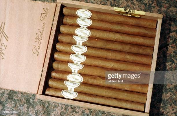 Havanna-Zigarren der Marke Davidoff in einer Zigarrenkiste