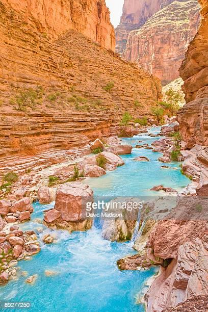 havasu canyon - havasu canyon stock photos and pictures