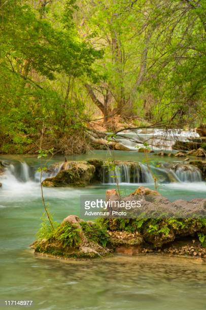 havasu canyon waterfall creek - havasu creek stock photos and pictures