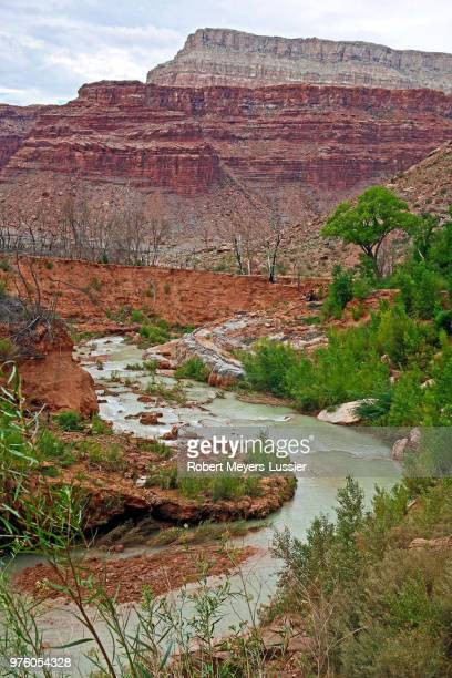 havasu creek from lower navajo falls - havasu creek stock photos and pictures