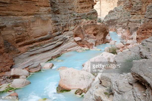 Havasu Creek in Grand Canyon National Park Arizona United States