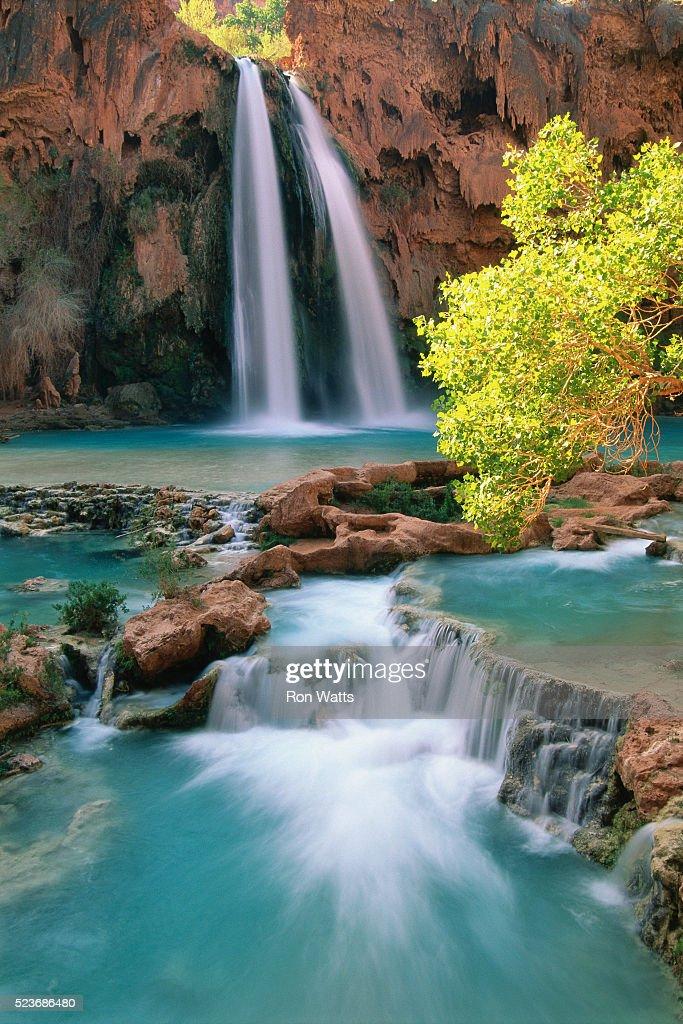 Havasu Falls : Stock Photo