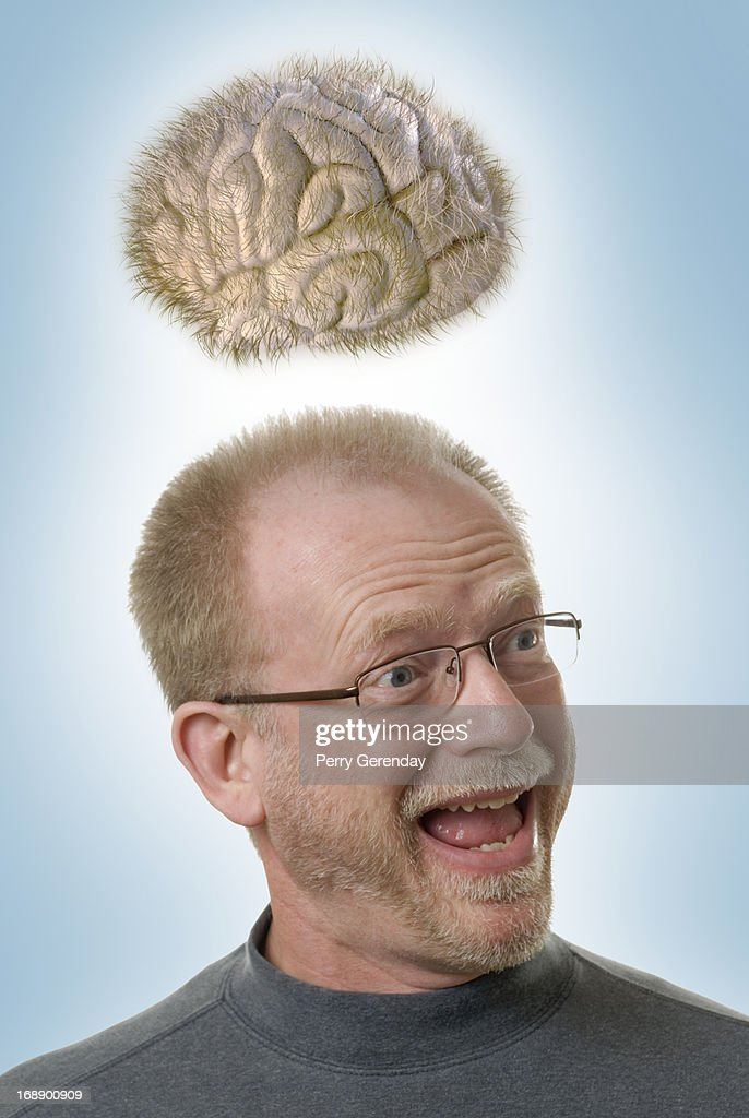 I Have a Hair Brained Idea : Stock Photo