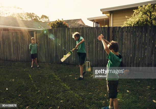 having a fun time in the yard - cricket bat stock pictures, royalty-free photos & images