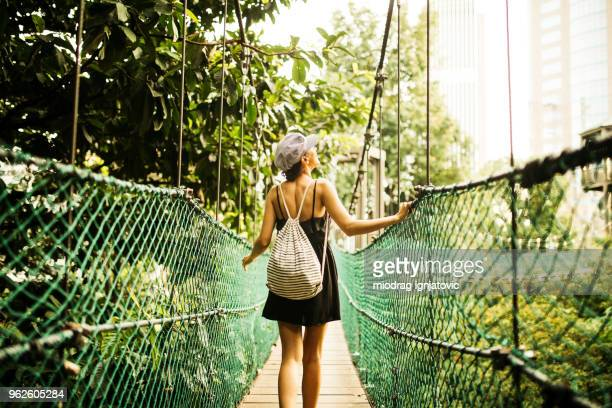 having fun canopy walking - canopy stock pictures, royalty-free photos & images
