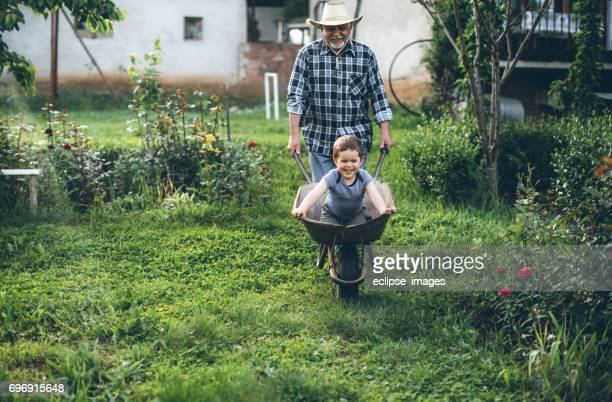 having fun in backyard - wheelbarrow stock photos and pictures
