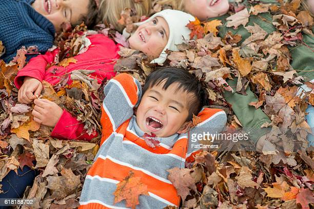 having fun in fall - young leafs stock photos and pictures