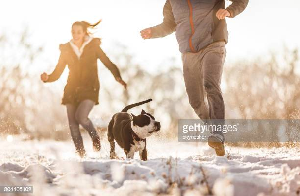 Having fun with a dog on a snow!