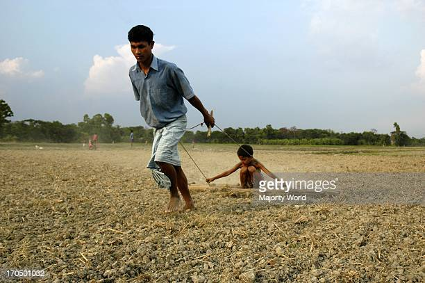 Having no bullocks to yoke a man pulls the ladder himself putting his child on it as a load to harrow his land Kaliganj Gazipur Bangladesh April 20...