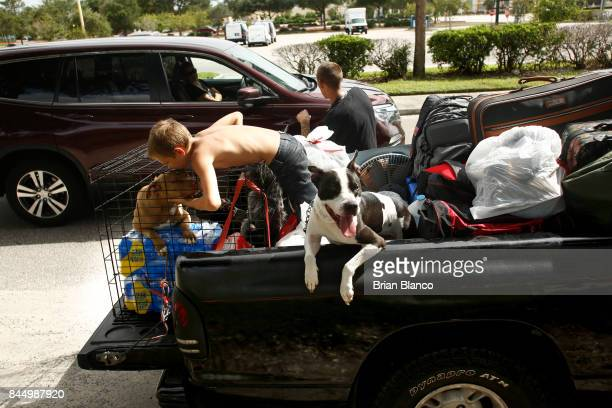 Having trouble finding a hotel room members of the Watson family of St Petersburg debates a passing motorist's offer to take in their dogs as they...