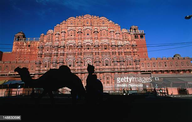 Hawa Mahal with silhouetted camel in the early morning light.