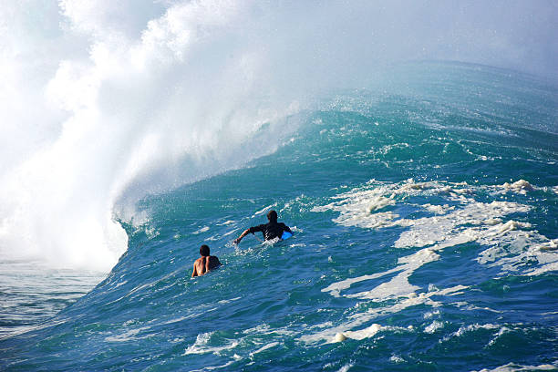 hawai hawaii surfing pictures getty images