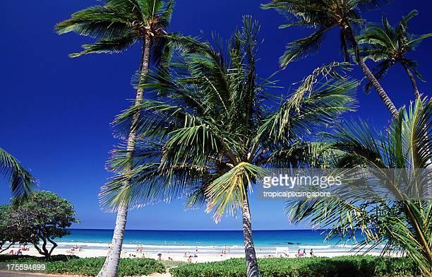usa, hawaii, big island, hapuna beach. - hapuna beach stock photos and pictures