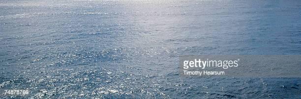 usa, hawaii, big island, near pahoa, pacific ocean - timothy hearsum stockfoto's en -beelden