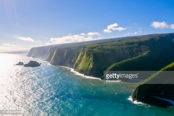 usa, hawaii, big island, pacific ocean, pololu valley lookout, kohala forest reserve, aerial view - ハワイ島 ストックフォトと画像