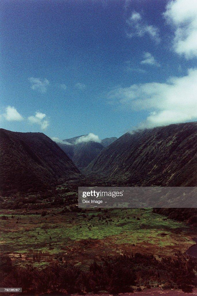 USA, Hawaii, Big Island, Steep cliffs : Stock Photo