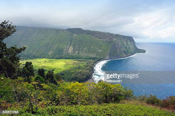 usa, hawaii, big island, view to waipio valley and bay - waipio valley stockfoto's en -beelden