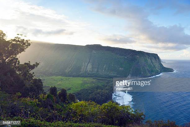 usa, hawaii, big island, waipio valley and bay at evening light - waipio valley stockfoto's en -beelden