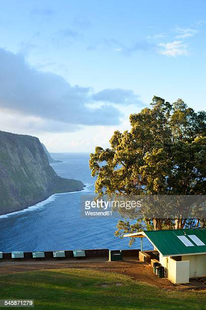 usa, hawaii, big island, waipio valley, view from observation point to steep coast - waipio valley stockfoto's en -beelden