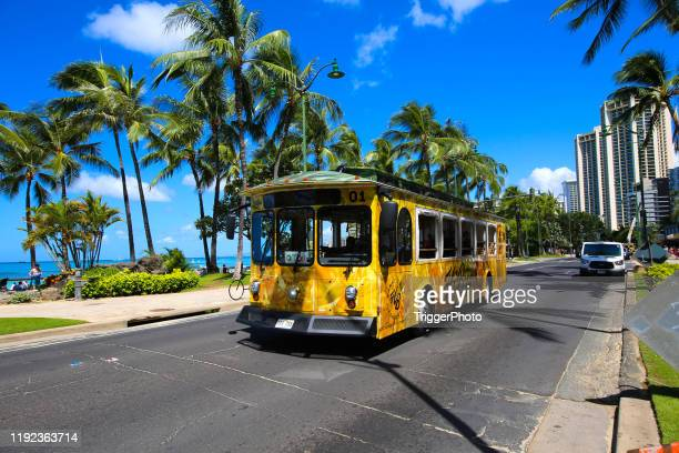 hawaii bus - honolulu stock pictures, royalty-free photos & images