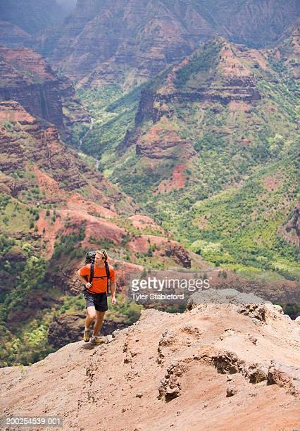 usa, hawaii, kauai, man hiking in waimea canyon, elevated view - waimea canyon stock pictures, royalty-free photos & images