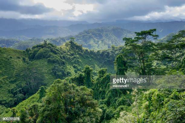 usa, hawaii, kauai, mountains - category:census-designated_places_in_honolulu_county,_hawaii stock pictures, royalty-free photos & images
