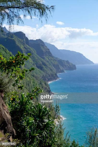 usa, hawaii, kauai, na pali coast state park, coast - na pali coast stock photos and pictures