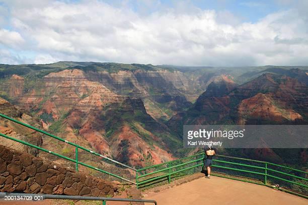 usa, hawaii, kauai, waimea canyon, woman admiring view, rear view - waimea canyon stock pictures, royalty-free photos & images