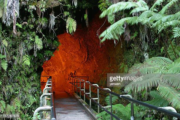 Hawaii Lava Tube