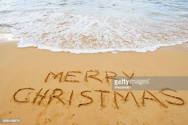 Hawaiian Merry Christmas.World S Best Hawaii Christmas Stock Pictures Photos And