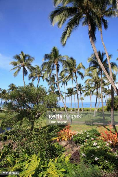 Hawaii, Maui, Wailea, beach, park, garden,