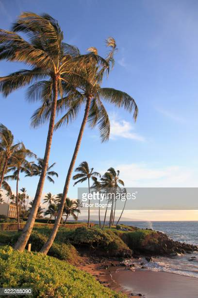 Hawaii, Maui, Wailea, beach,