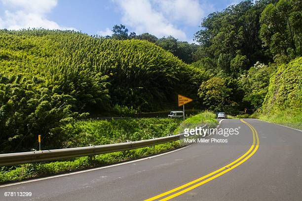 USA, Hawaii, Maui's Lush Highway to Hana