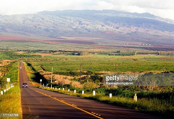 usa hawaii molokai, rural highway. - media_in_honolulu,_hawaii stock pictures, royalty-free photos & images