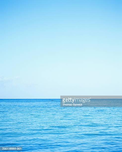 usa, hawaii, oahu, horizon, dawn - 縦位置 ストックフォトと画像