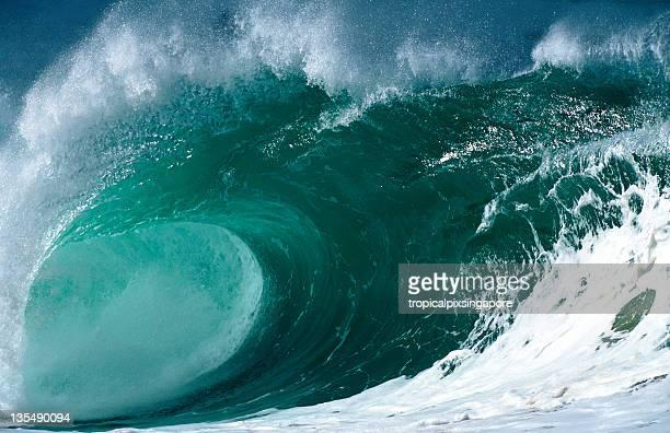 o'ahu, havaí, eua do pacífico norte, na onda do mar em waimea bay. - waimea bay - fotografias e filmes do acervo
