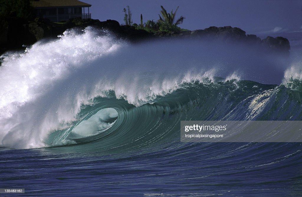 USA Hawaii O'ahu, North Shore, Waimea Bay. : Stock Photo