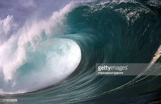 usa hawaii o'ahu, north shore waimea bay. - waimea bay stock photos and pictures