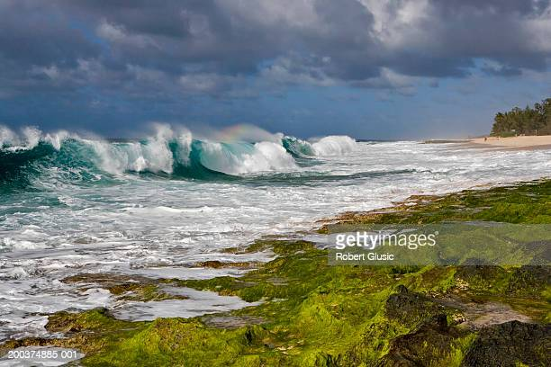 usa, hawaii, oahu, north shore, waves crashing on beach - north shore stock photos and pictures