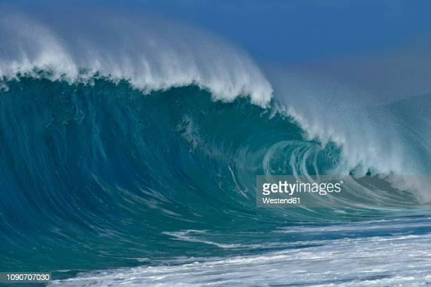 usa, hawaii, oahu, pacific ocean, big dramatic wave - wave stock pictures, royalty-free photos & images