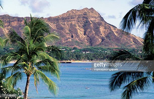usa hawaii o'ahu, waikiki and diamond head. - diamond head stock photos and pictures
