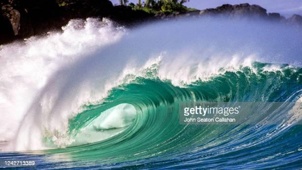usa, hawaii, ocean wave at waimea bay - waimea bay - fotografias e filmes do acervo