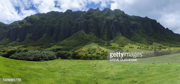 hawaii - prehistoric era stock pictures, royalty-free photos & images
