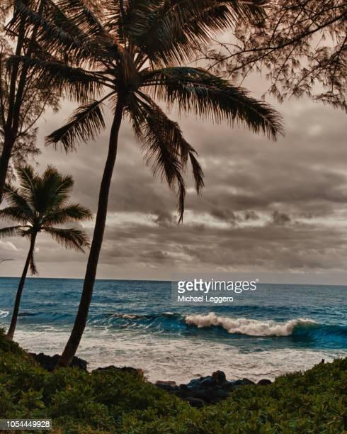 hawaii - パホア ストックフォトと画像
